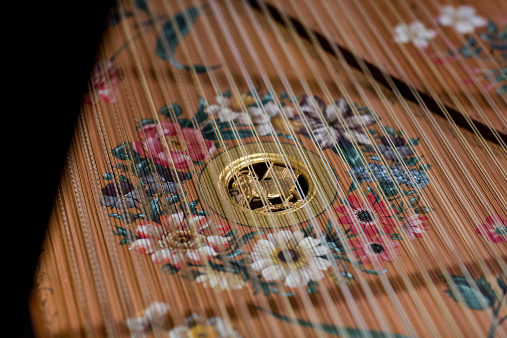 close up of a pattern on a instrument
